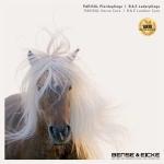 Bense & Eicke Katalog